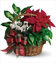 Holiday Homecoming Planter Basket