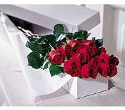 Photo of Premium Roses Boxed