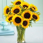Photo of a SUNflower Bouquet in a glass vase
