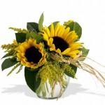 Photo of Sassy Sunflowers in a glass vase