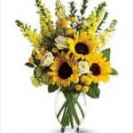 Here Comes The Sun Flowers by Teleflora