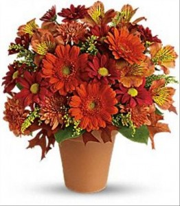 Orange spray roses and miniature gerberas
