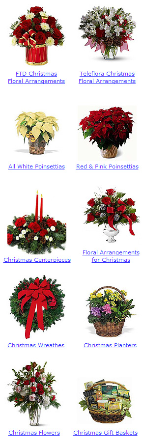 Photo of Christmas Flowers, Plants and Gifts