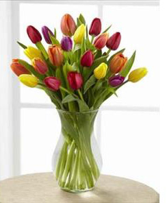 The FTD Bright Lights Tulip Vased