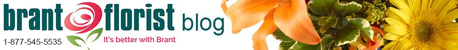 Brant Florist Blog header image