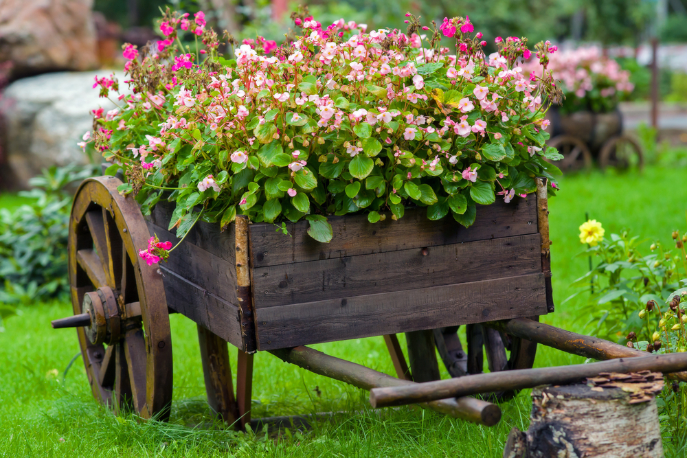 Photo of Wooden Wheelbarrow Garden Planters