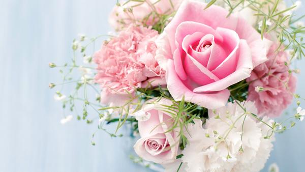 Roses-flowers-34758604-1920-1080