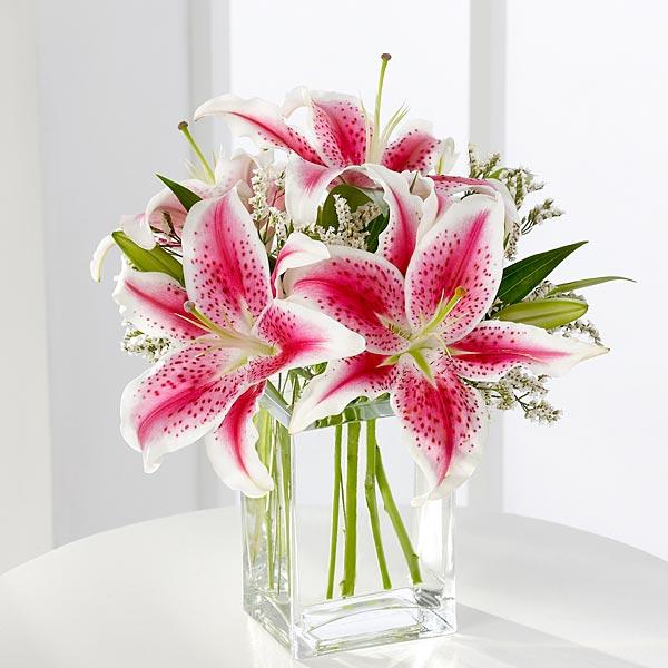 FTD Pink Stargazer Lily Bouquet - BF5840