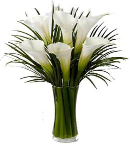 Calla Lillies | Unscented flowers | Brant Florist
