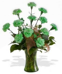 St Patrick's Day Carnations from Brant Florist