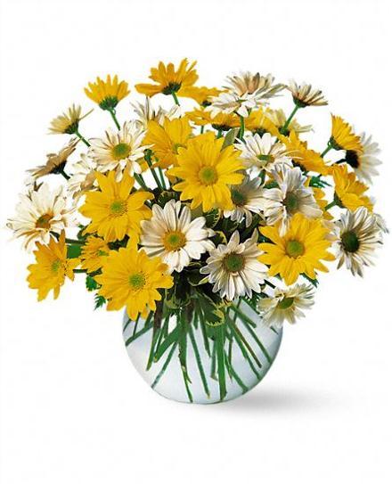 Best Sellers Spring Flowers