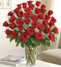Photo of 36 Red Roses Vased with Babys Breath - BFg