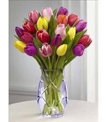 Photo of The FTD Spring Tulip Bouquet - 13-S2