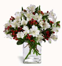 Photo of Winter Elegance Bouquet  - B2-4111