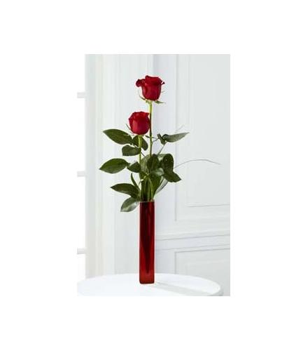 Photo of BF7159/B20-4403d (Two Roses)
