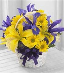 Photo of The FTD Spirit of Spring Basket - B25-4126