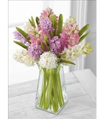 Photo of Hyacinths Pure Perfection Bouquet FTD - B29-4869