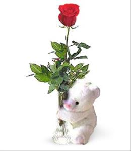 Photo of One Rose and Teddy Bear - BF1131