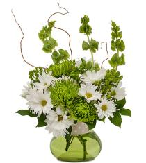 Photo of Dots and Daisies in Vase - TMF14-221