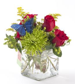 Photo of Red Roses and Green by BF - BF1200