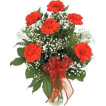 Photo of Carnations with Babys Breath Vased - D110