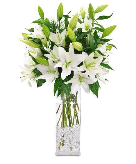Photo of BF1711/C1211 (More lilies)