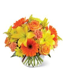 Photo of Vibrant Views Bouquet by FTD - B3-4952