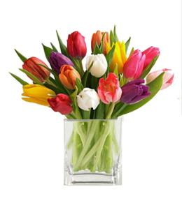 Photo of BF2139/FU18d (Approx.  20 Tulips)