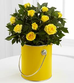 Photo of BF2140/PR94 (Yellow Mini Rose)