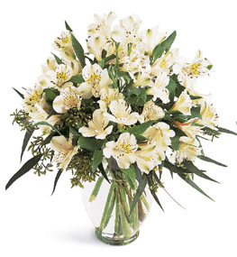 Photo of Elegant Alstroemeria Vase Color Choice  - B1-3700