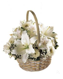 Photo of Divinity Basket of Flowers  - S38-3813