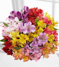 Photo of Pick Me Up Rainbow Discovery Peruvian Lilies in Vase  - FK522