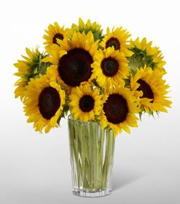 Photo of Golden Sunflower Bouquet in Vase - 16-F7