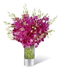 Photo of Orchid Bouquet FTD M9 - 17-M9
