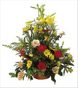 Photo of Arrangement of Cut Flowers  - IC-406