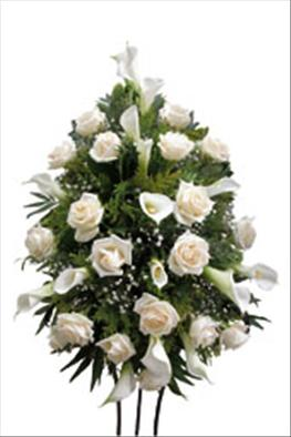 Photo of Funeral Spray White Roses - IC-409