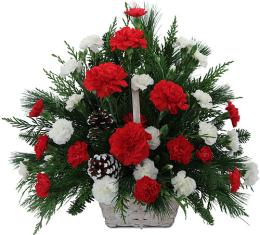 Photo of Red and White Carnation Basket  - CUSTOM