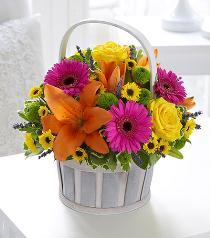 Photo of Vibrant Basket Arrangement - 500521