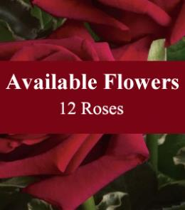Photo of Florist Choice 12 Roses - BF3542