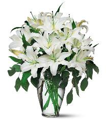 Photo of Perfect White Lilies with Vase  - TF24-1
