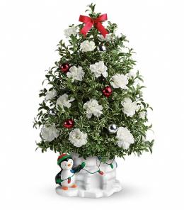 Photo of Send a Hug Precious Penguin by Teleflora - T14X500