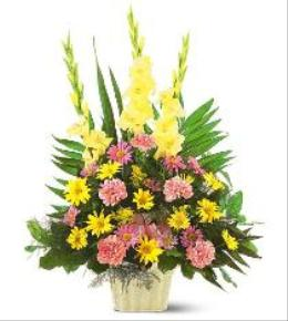 Photo of Warm Thoughts Arrangement  - TF184-3