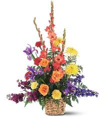 Photo of Rainbowt Flowers Basket Arrangement - TF187-6