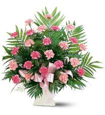 Photo of Classic Carnation Arrangement Color Choice - TF198-3