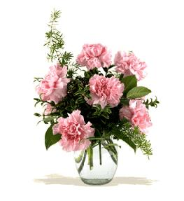 Photo of Carnations Vased with Greens  - BF-F2