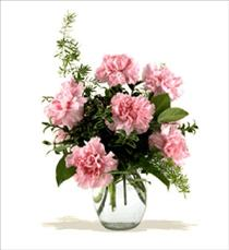Photo of Carnations Vased 12 Colors  - BF-F2