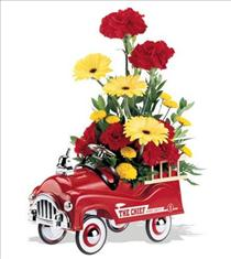 Photo of Fire Engine Flowers - T05J100