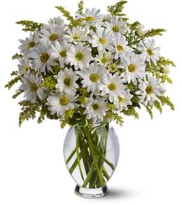 Photo of Daisy Days with Vase  - TFWEB407