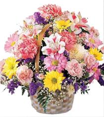 Photo of Basket of Cheer Flower Basket - C14-3072