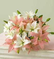 Photo of Asiatic Lily Bouquet Color Choice Gift Wrapped - 8lily